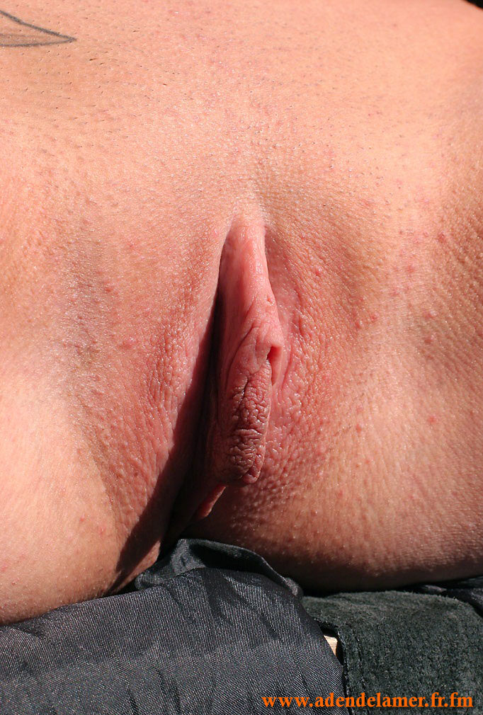 http://janet.roprit.free.fr/Amat/Ginger/03/images/042.jpg
